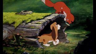 Fox & The Hound