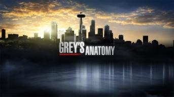 Grey's Anatomy 2