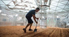 Creating the Potato Garden