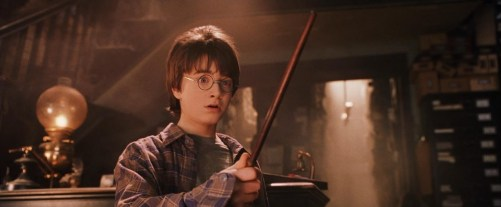 Harry's New Wand