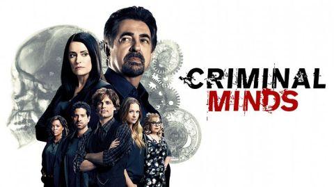 criminal-minds